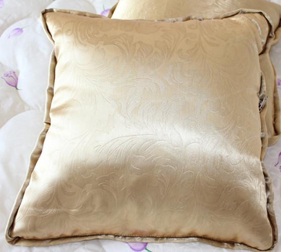 蚕丝靠垫被 抱枕